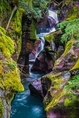 Avalanche Gorge (Bjoern Schmitt) Tags: avalanche gorge glacier national park usa montana water rapids cliffs waterfall stream bushes rocks