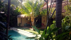 Private Seminyak villa garden, Bali (scinta1) Tags: indonesia bali seminyak villa garden pool green peaceful tranquil restful tropical trees palms leaves flowers bohemian private plants water relaxing outdoors shade shadows