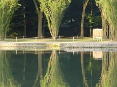 Sceaux xuaecs (supermimil) Tags: supermimil 2017 sceaux 100 france 92 parc bassin domaine tz80 iledefrance hautdeseine europe reflet nature 300