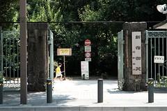 DSCF6243 (keita matsubara) Tags: shinjyuku gyohen shinjyukugyoen tokyo japan garden 新宿 新宿御苑 東京 庭 庭園 日本