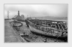 - File1340 (Ferruccio Jochler) Tags: mare barche porto pesca