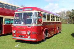 A batch of six. (steve vallance coach and bus) Tags: ffn451 leylandroyaltiger parkroyal eastkent southeastbusfestival detling ensignbus