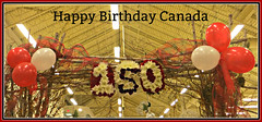 Happy Birthday Canada (bigbrowneyez) Tags: happybirthdaycanada happycanadaday festivities celebration fun enjoyment rain sun wind tribute balloons compleanno festa party excitement joy happiness banner loblaws gorgeous fabulous striking stunning art artful creative bello bellissimo beautiful holiday longweekend july1st2017 colorful