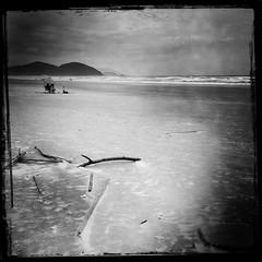 São Sebastião (John Beeching) Tags: otherkeywords iphone people bw blackandwhite brazil hipstamatic beach sunshade sea
