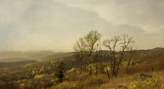 Hiking Out, Shenandoah National Park (Suzanna Mars) Tags: hiking virginia shenandoah np mountains