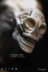 XENOCOV21 (sith_fire30) Tags: alien aliens covenant nostromo sulcaco venomorph protomorph neomorph hrgiger giger ridley scott sculpture miniature aves avesstudio fixit sculpt sithfire30 dayton allen