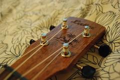 Practice shots with new camera (emily.morison) Tags: nikond80 d80 nikon wooden wood blackandwhite instrument ukulele uke