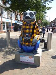 Grandpa Bear - The Big Sleuth - High Street, Solihull