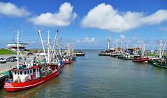 Hafen Accumersiel (antje whv) Tags: accumersiel dornumersiel ostfriesland hafen port norddeutschland northgermany nordsee northsea kutter cutter