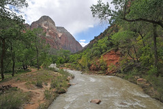 The river in Zion National Park from the bridge (Vee living life to the full) Tags: nikond300 2017 holiday travel tourism tourist placestovisit traveller pleasure usa california leisure sky blue clouds dry hot haze walking driving temperature 80degreesplus nevada utah arizona distance layers limestone sandstone water evaporation disintegration weathering leger erosion roads route american vehicle rocks rock cliff sheer drop mountains skyline horizon sitting geology sedimentary compression uplift wild road formation monuments valley death nationalpark zion pine trees river people