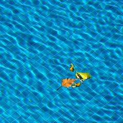 Let's take a swim! (Ulrich Neitzel) Tags: blau blue leaf leaves mzuiko1250mm minimal olympusem5 pool square swimming wasser water swim
