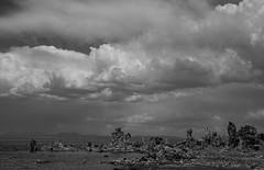 Stormy clouds over Tufa Towers (Nancy King Photography) Tags: california monolake tufatowers blackandwhite limestone tufa lake landscape clouds