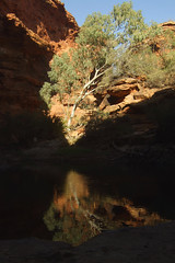 Kings Pictures 547 RS (Swebbatron) Tags: fujif20 northernterritory australia 2008 radlab lifeofswebb travel redcentre groovygrape kingscanyon outback landscape gardenofeden reflection water