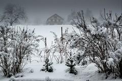 Haute-SAvoie, Mont-Blanc, 17 (Patrick.Raymond (3M views)) Tags: montagne neige gel froid hiver brume brouillard combloux chalet hdr nikon alpes