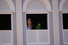 "Walt Disney World: Kermit and Piggy • <a style=""font-size:0.8em;"" href=""http://www.flickr.com/photos/28558260@N04/33941277243/"" target=""_blank"">View on Flickr</a>"