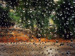 when it #rains in #May #raindrops #waterdrops #photography #photo #spring #glass #street_photography (salam.jana) Tags: rains may raindrops waterdrops photography photo spring glass streetphotography