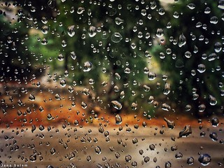 when it #rains in #May #raindrops #waterdrops #photography #photo #spring #glass #street_photography