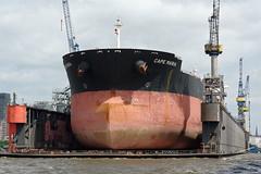 Dock 11 von Blohm & Voss (hu.roescheisen) Tags: hamburg elbe hafen dock schwimmdock blohmvoss werft