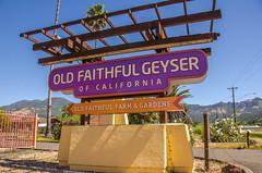 Old Faithful Geyser of California Tourist Attraction (www78) Tags: old faithful geyser california calistoga