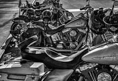 Memorial Weekend Riders (jshyshka) Tags: red bikes motorcycle memorial day leica m8 blackwhite