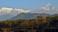 """NEPAL, Himalaya - Annapurna-Massiv  mit Machapuchare """" Fischschwanz"""" ,  von Pokhara aus gesehen, (serie) 16177/8478 (roba66) Tags: annapurna annapurnamassiv himalaya himalayagebirge gebirge reisen travel explore voyages roba66 visit urlaub nepal asien asia südasien pokhara landschaft landscape paisaje nature natur naturalezza mountain berge range mountains montana felsen rock rocks gletscher eis ice"""