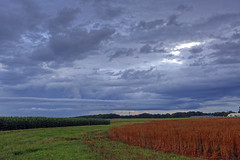 Rain in the afternoon - Pendleton S.C. (DT's Photo Site - Anderson S.C.) Tags: canon 6d 1740mml lens pendleton andersonsc simpson experimental station storm clouds rain summer shower farm hdr