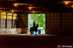 JBC_9204.jpg (Jim Babbage) Tags: krahc annualshow horse bethany horseshow
