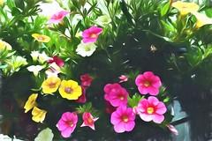 conversation (larrynunziato) Tags: floral collaboration