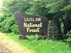 Siuslaw National Forest Sign in Oregon (TrailMob.com) Tags: siuslawnationalforest capeperpetua oregon oregoncoast hikingtrail hiking camping oregoncoastscenery pacificocean pacific backpacking outdoors outdoorsrecreation outside optoutside trailmob exploreoregon disoveroregon green nature naturephotography