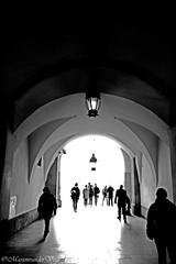Don't go into the light (Marjon van der Vegt) Tags: polen krakau marktplein koppen versiering mensen straat buiten standbeelden torens paarden schoonheid