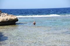 DSC_0134 (russellfenton) Tags: egypt marsaalam nikon nikon7200 7200 corayabeach steigenberger snorkelling sea boat