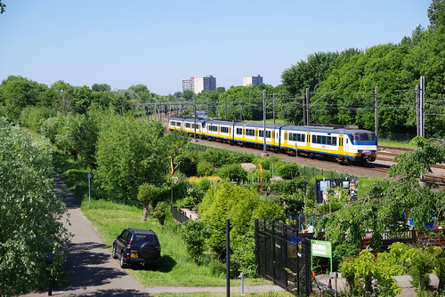 170527 IMGP0246 Rijswijk
