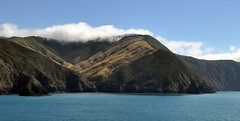 Crossing of Cook Strait (Lim SK) Tags: cook inter islander new zealand picton