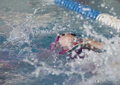 """adam zyworonek fotografia lubuskie zagan zielona gora • <a style=""""font-size:0.8em;"""" href=""""http://www.flickr.com/photos/146179823@N02/34563512700/"""" target=""""_blank"""">View on Flickr</a>"""