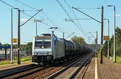 E483 253 (Łukasz Draheim) Tags: poland polska pociąg pkp kolej bydgoszcz nikon landscapes landscape scenerie scenery railway railroad rail train transport d5200