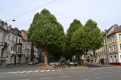 Parklaan, Gent (Erf-goed.be) Tags: parklaan laan platanen gent archeonet geotagged geo:lon=37183 geo:lat=510348 oostvlaanderen