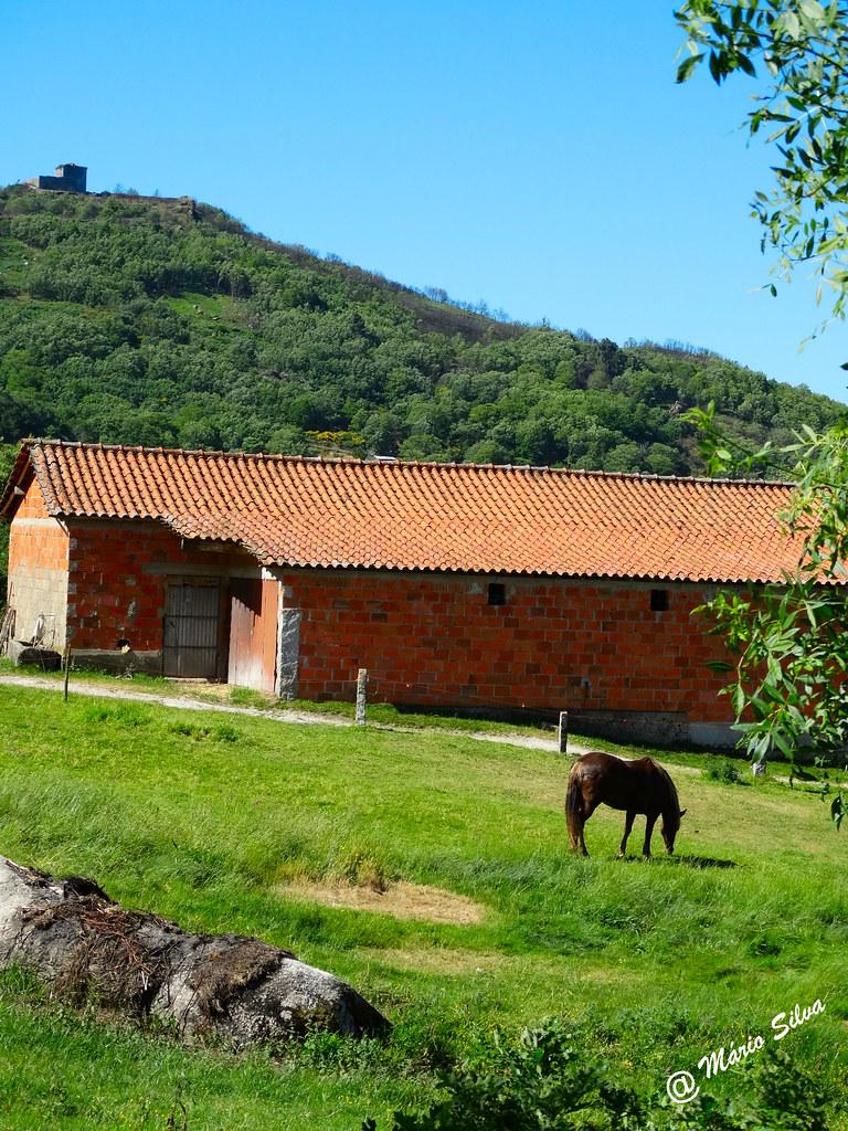 Águas Frias (Chaves) - ... o cavalo e o armazém