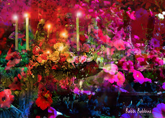 Red Dreams (brillianthues) Tags: candles red flowers abstract colorful collage photography photmanuplation photoshop