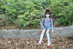 Happy ! (Ninotpetrificat) Tags: mdd dd dollfiedream dollfie dollclothes doll muñeca japajtoy asiandoll cute kawaii woods wald hobby handmade toys puppe