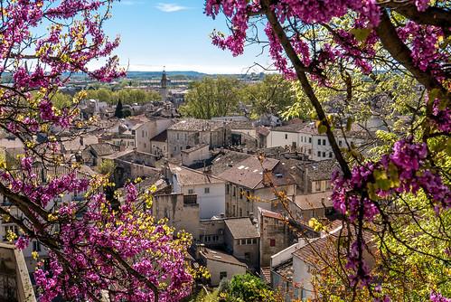 Avignon_BasvanOort-38