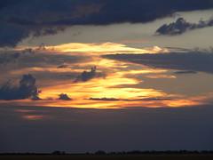 P1000352 (cam.stewart) Tags: wee waa farming sunset nature flood