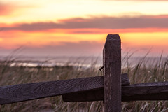 Watching the Sunrise... (trs125) Tags: fencefriday fence sunrise sky dunes beach