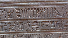 Edfu Temple Hieroglyphs (Rckr88) Tags: edfu temple hieroglyphs edfutemplehieroglyphs egypt edfutemple temples africa travelling travel ancient ancientegypt relic relics pharoah pharoahs carvings carving carve walls wall