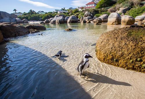 Kaapstad_BasvanOort-103