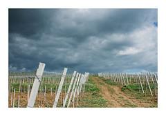 Untitled Image (Florin Aioanei) Tags: landscape nature sky romania florin aioanei