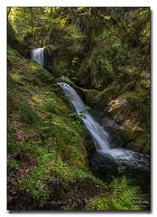 Dolgoch-Falls (jeremy willcocks) Tags: dolgochfalls wales north colour waterfall woods pool landscape jeremywillcocks wwwsouthwestscenesmeuk fujixpro2 xf1024 uk