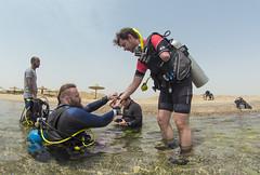 19 18a (KnyazevDA) Tags: diver disability disabled diving undersea padi paraplegia paraplegic amputee egypt handicapped wheelchair aowd sea travel scuba underwater redsea