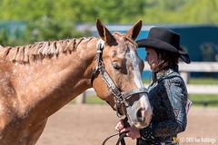 JBC_8256.jpg (Jim Babbage) Tags: krahc annualshow appaloosa horses mason