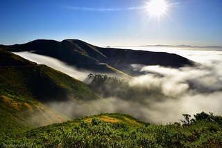 Rolling Fog|Marin Headlands, San Francisco