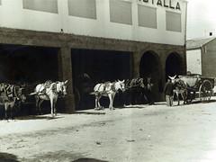 4 Bodega Cooperativa Castalla